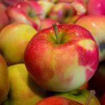 exportación de frutas y hortalizas españolas