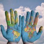 Páginas web sobre Exportación | Empresa de Traduccion