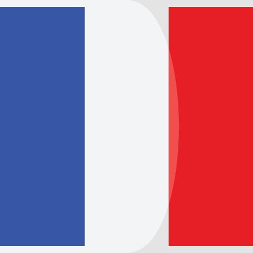 Traducción profesional al francés